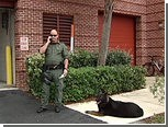 Пса попросили выступить свидетелем в суде