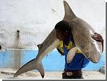 Сомалийские рыбаки попросили прекратить авиаудары по пиратам