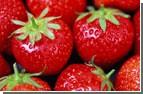 Любителям свежих овощей советуют потерпеть еще недельку. Карман будет не так «болеть»