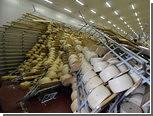Итальянцы лишились 400 тысяч головок сыра из-за землетрясения