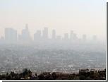 В появлении калифорнийского смога обвинили коров