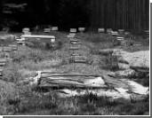Власти штата ищут повод перезахоронить Царнаева