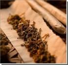 Спортсменам разрешили курить марихуану во время соревнований