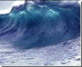 Депутат Госдумы предрекает мировую экологическую катастрофу