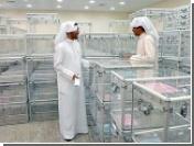 Женщины Кувейта впервые участвуют в выборах