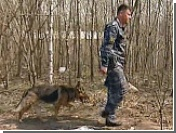 Новое убийство в Битцевском лесопарке Москвы: женщине вогнали два кола в голову