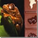 """Любителям шоколада попалась одноклеточная """"изюминка"""""""
