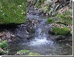 В одном из живописных сел Приднестровья прошел Праздник чистой воды
