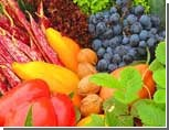 Южноуральцы недоедают овощей, яиц и йодированной соли