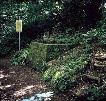 В Германии вскроют могилу наследницы французских королей