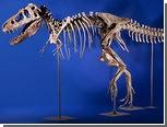 Проданный на аукционе в США скелет динозавра потребовали вернуть Монголии