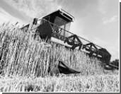 Россия меняет систему поддержки сельхозпроизводителей