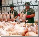 Россия проверит украинское мясо, рыбу и многое другое