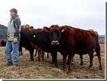 Сенат США согласился отменить субсидии фермерам на 24 миллиарда долларов