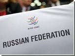 Правительство поддержало ратификацию вступления России в ВТО