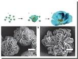 Наноцветы помогли ускорить работу ферментов
