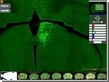 Виртуальный микроскоп поможет установить связи в мозге мыши