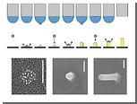 Струйный нанопринтер научился печатать вертикально