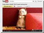 Нейронная сеть Google распознала котов