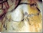 """Археологи обнаружили """"пещерное кино"""""""