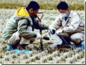 Японские ученые нашли способ победить радиацию