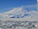 Ученые нашли растительность в древней Антарктиде