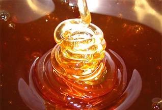 Из-за жары дом в Бристоле начал сочиться медом