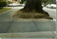В США появились резиновые тротуары