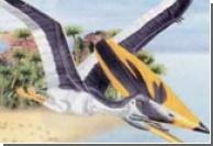 Палеонтологи выяснили назначение гребня птерозавра