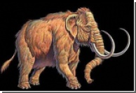 Происхождение мамонтов помогла выяснить вечная мерзлота