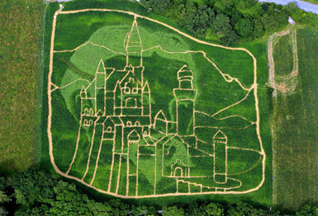 Художники изобразили замок на конопляном поле