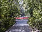 Комсомольский парк Харькова переименуют в Парк памяти