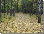 Завтра уральцы смогут узнать, какой будет осень