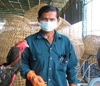 Еще один человек скончался от птичьего гриппа во Вьетнаме