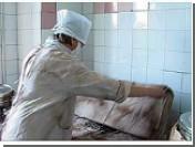 В этом году от укусов клещей погибли 26 человек