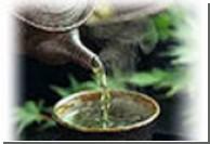 Зеленый чай в большом колличестве - яд