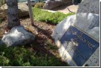 Мемориальное дерево Джорджа Харрисона съели божьи коровки