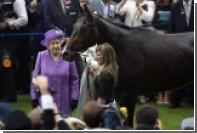 У лошади Елизаветы II нашли допинг