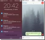 Баг в Telegram позволил москвичке незаметно читать переписку телеканала «Дождь» [видео]