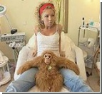 Лондонский цирюльник неплохо зарабатывает, создавая интимные парички