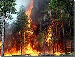 Ситуацию в Херсонской области расследует правительственная комиссия