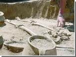 Украинские археологи раскопали готский некрополь