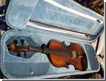 Украденную скрипку обнаружили в витрине магазина