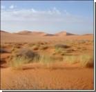 Сахару остановят стеной