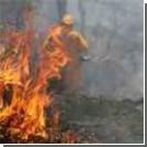Тысячи американцев эвакуированы из-за лесных пожаров