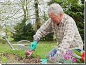 Повседневные дела по дому заменяют людям среднего возраста походы в спортзал
