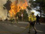 В окрестностях Марбельи проведена эвакуация из-за лесного пожара