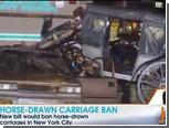 В Нью-Йорке запряженная в карету лошадь попала в ДТП