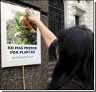 Чиновники в Уругвае будут распространять марихуану