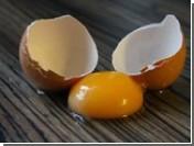 Яичный желток — один из самых вредных продуктов